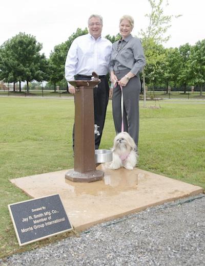 Murdock at Bark Park