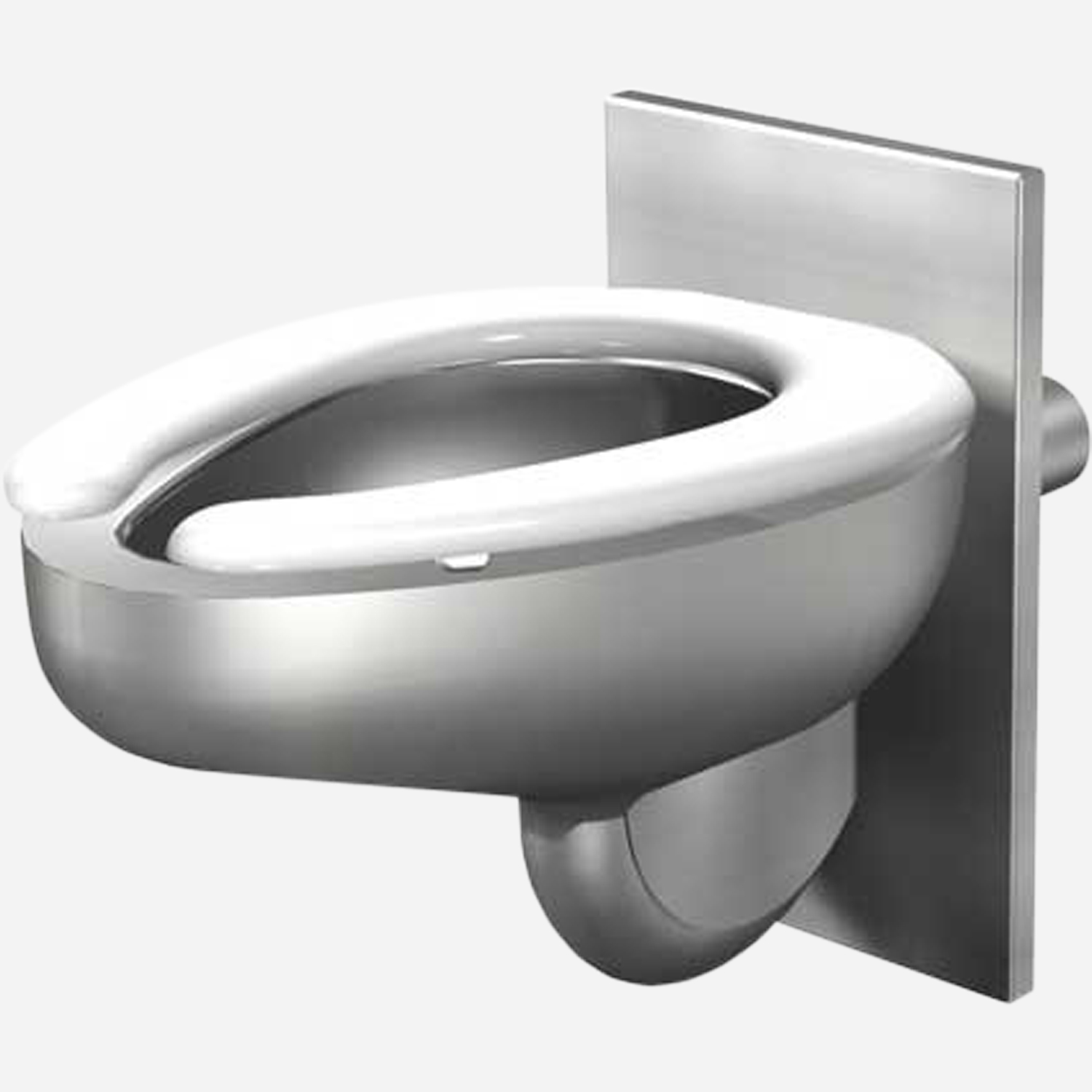 Stainless Steel Toilets Toilet Risers and Flush Valves